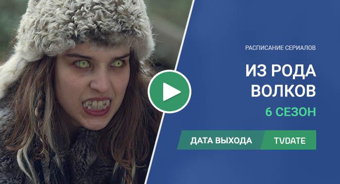Видео про 6 сезон сериала Из рода волков